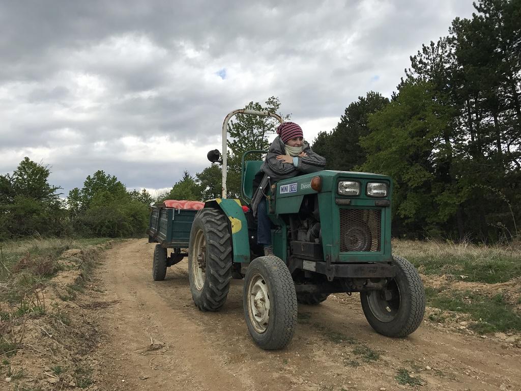 tractor daniela bojinca blog