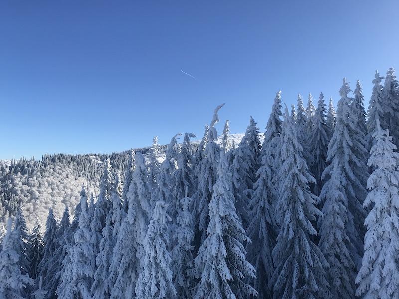 ski straja partia constantinescu complex montana 1